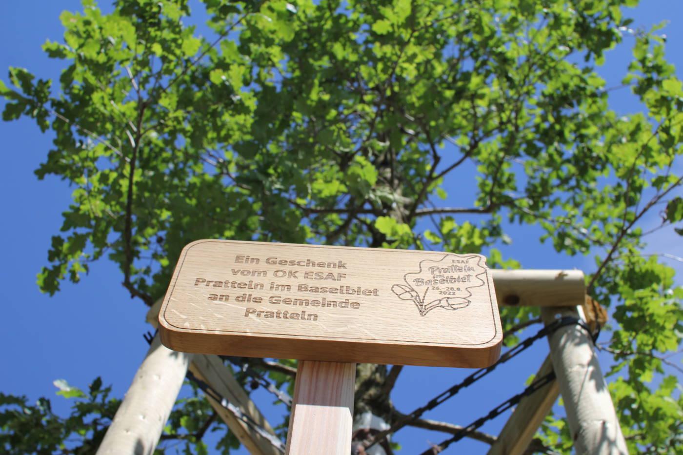 Eine Eiche für die Gemeinde Pratteln, Eidgenössisches Schwing- und Älplerfest Pratteln im Baselbiet | ESAF 2022