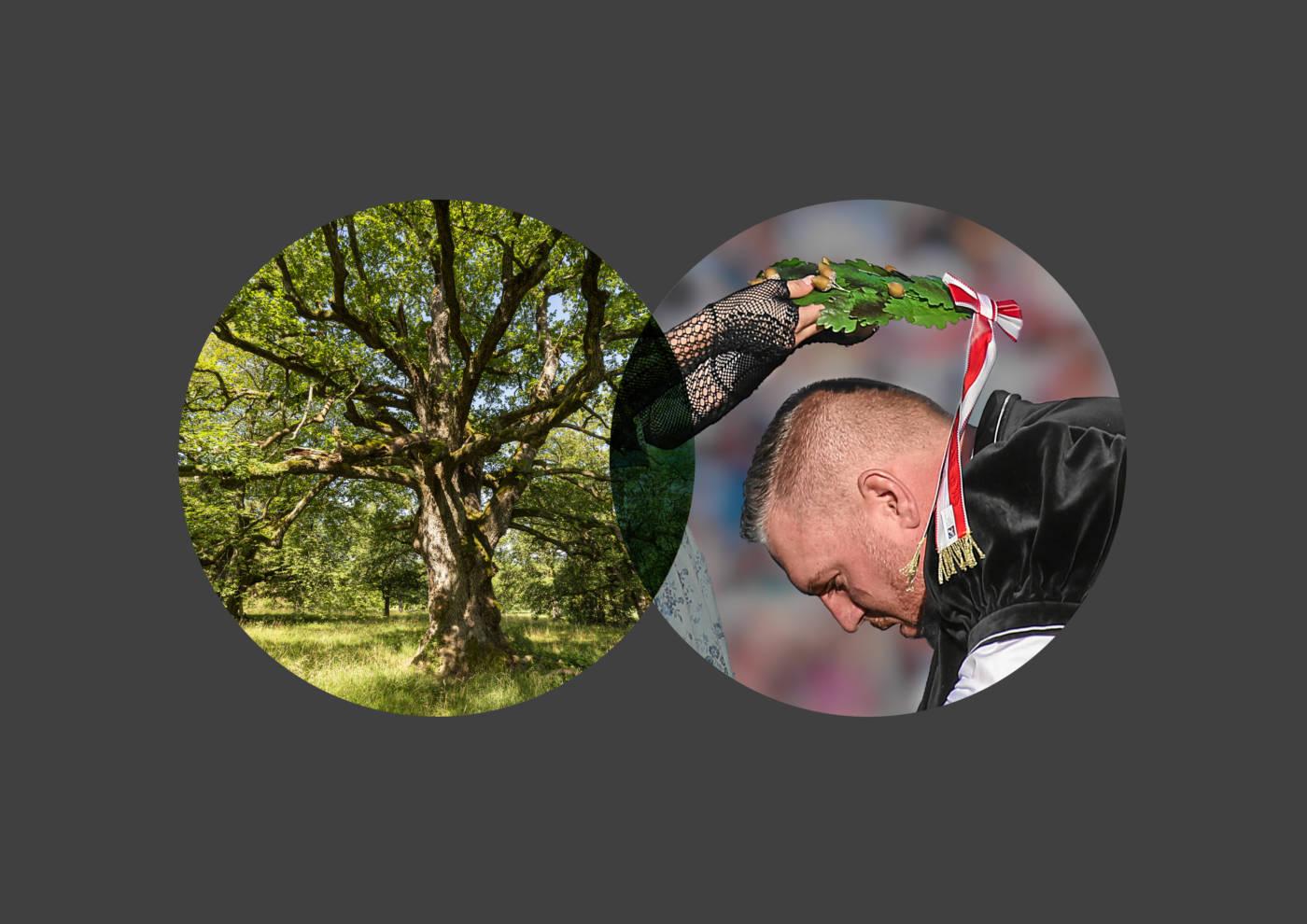 Das Eichenblatt als Symbol fürs Schwingen und die gastgebende Region, Eidgenössisches Schwing- und Älplerfest Pratteln im Baselbiet | ESAF 2022